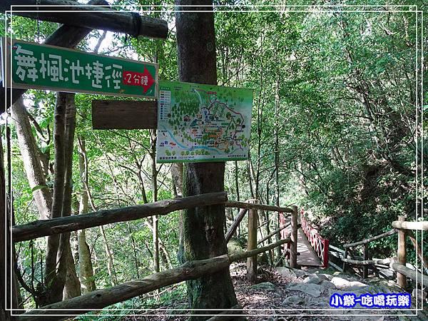 新竹-馬武督綠光森林 (31).jpg