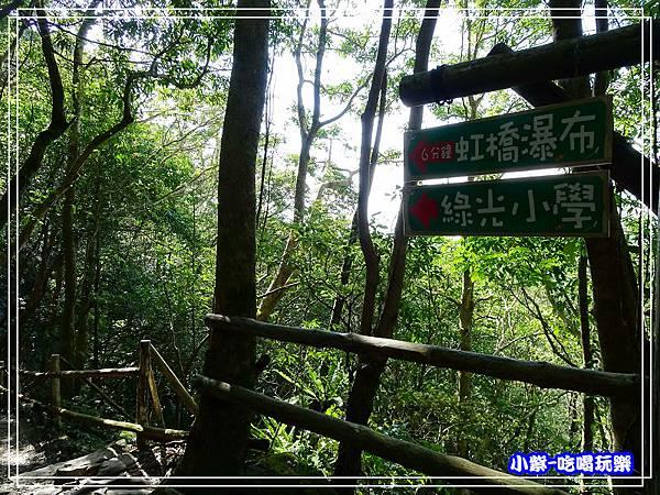 新竹-馬武督綠光森林 (32).jpg