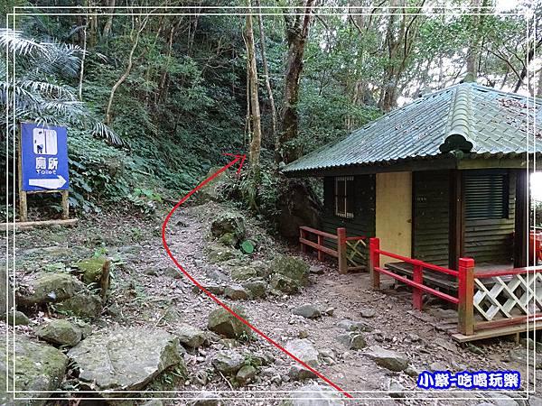 新竹-馬武督綠光森林 (35).jpg