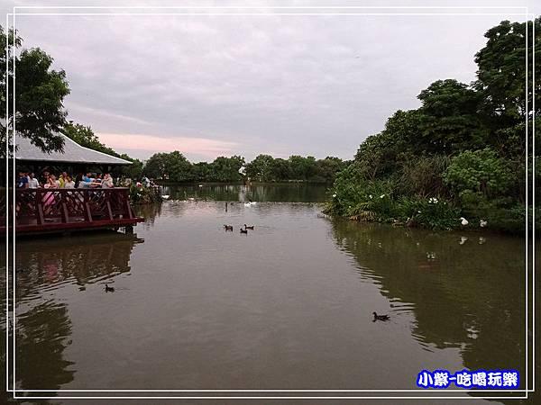 八德坡塘生態公園12.jpg
