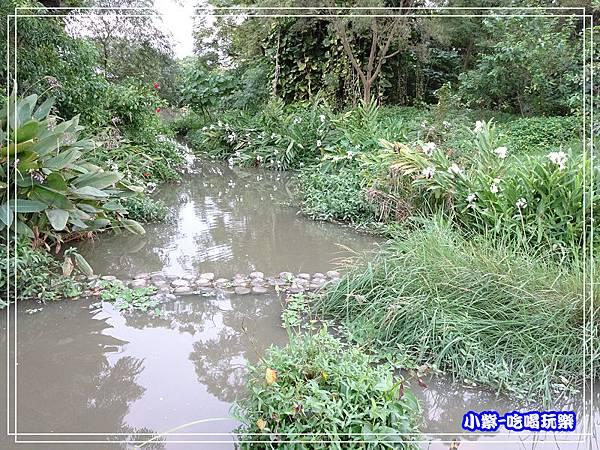 八德坡塘生態公園19.jpg