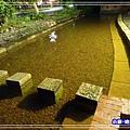停車場旁免費冷泉 (3)0.jpg