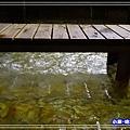 蘇澳冷泉-體驗池 (14)26.jpg