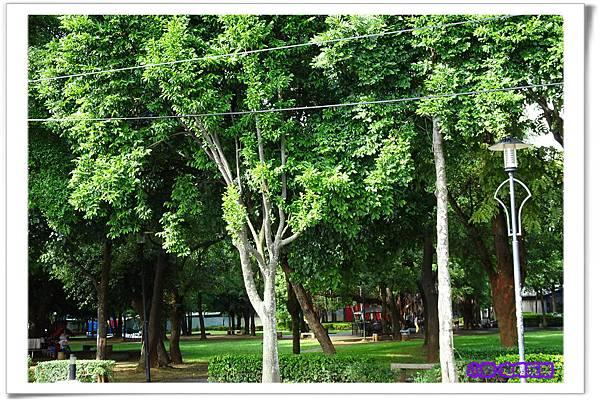 大湳公園 (3)14.jpg