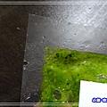 羅勒松子醬 (6)40.jpg
