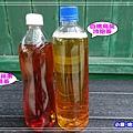 龍鳳呈祥-冷泡茶2.jpg