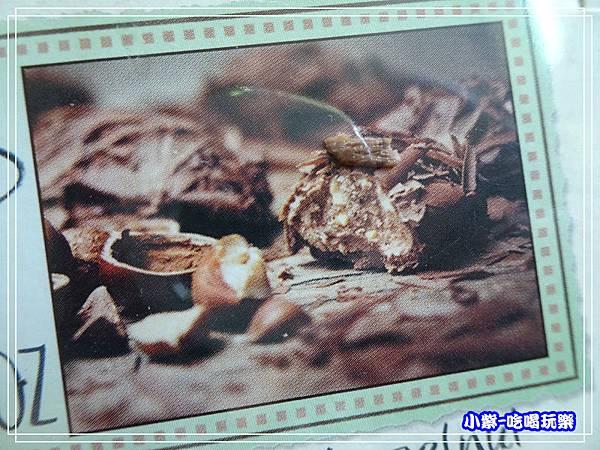 黛朵榛果松露巧克力 (1)89.jpg