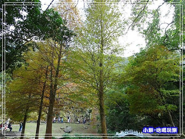 溪州公園步道 (2)12.jpg