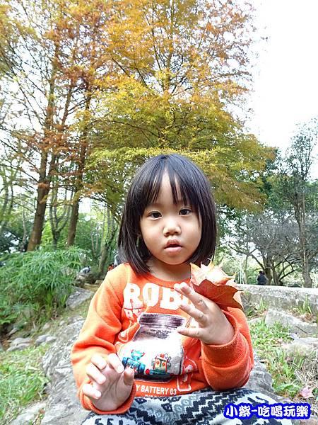 溪州公園步道 (6)6.jpg