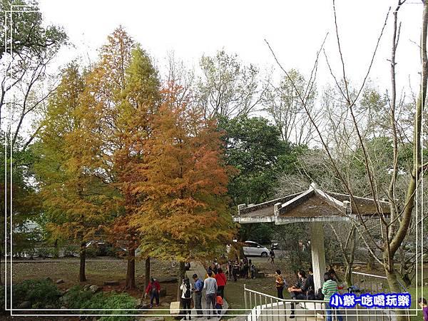 溪州公園步道 (8)13.jpg