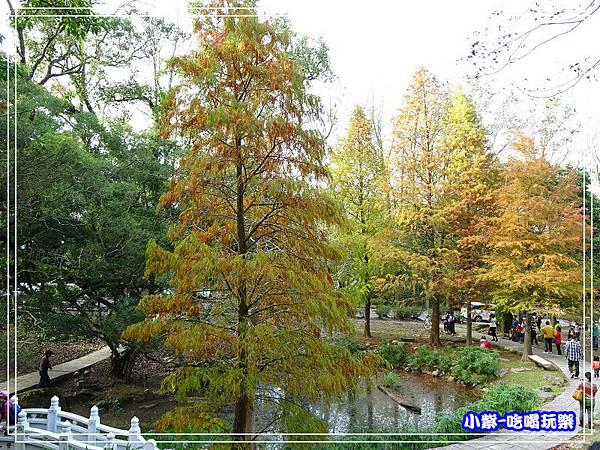 溪州公園步道 (9)14.jpg