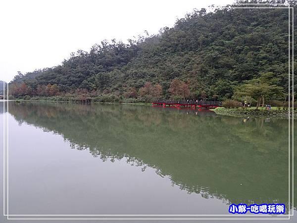 望龍埤 (28).jpg