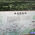 DSC0499813.jpg