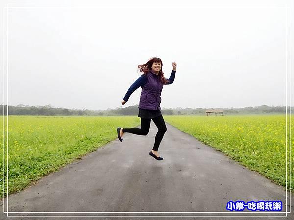 大農大富平地森林農場6.jpg