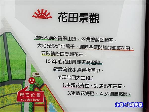 大農大富平地森林農場15.jpg