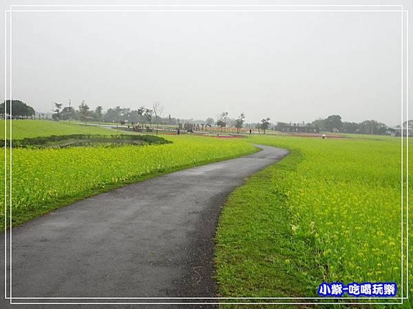 大農大富平地森林農場17.jpg