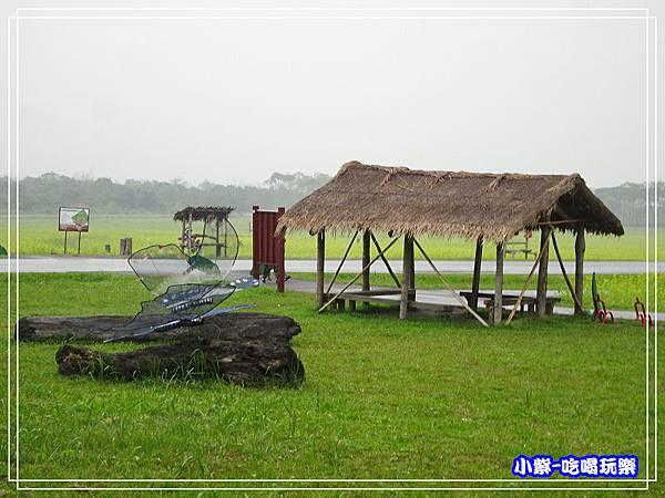 大農大富平地森林農場34.jpg