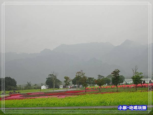 大農大富平地森林農場42.jpg