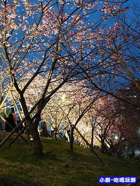 樂活公園 (6).jpg