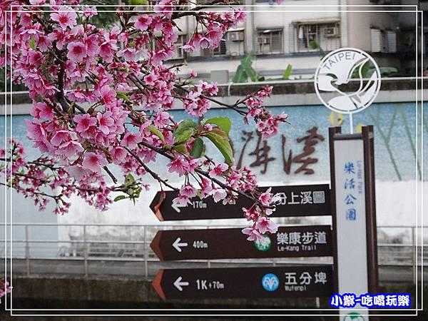 樂活公園 (9).jpg