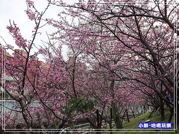 樂活公園 (11).jpg