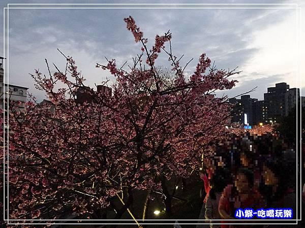樂活公園 (14).jpg