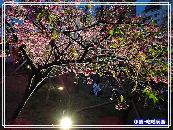樂活公園 (15).jpg