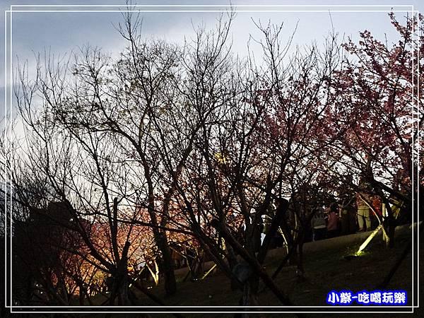 樂活公園 (18).jpg