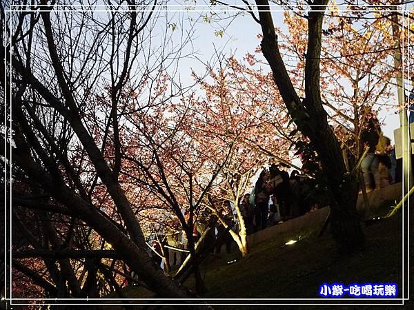 樂活公園 (20).jpg