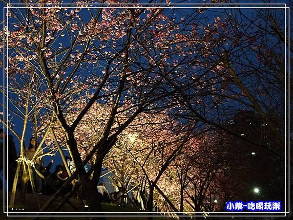 樂活公園 (22).jpg