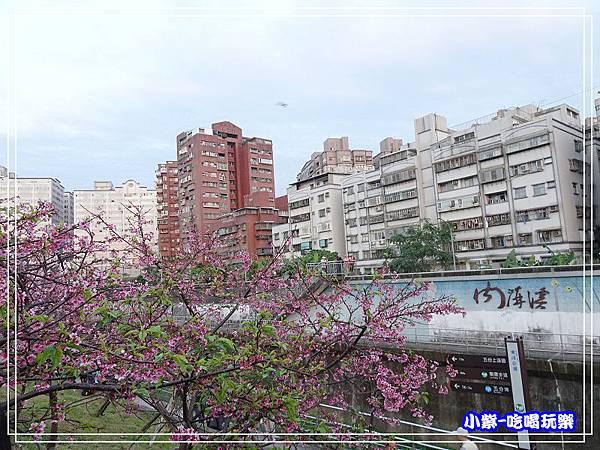 樂活公園 (17)P03.jpg