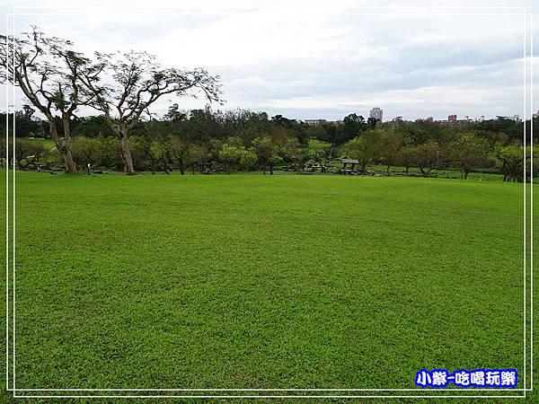 羅東運動公園12.jpg