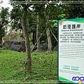 羅東運動公園28.jpg