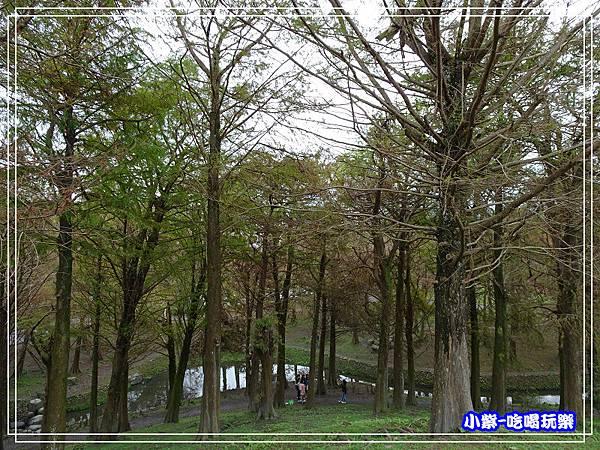 羅東運動公園33.jpg