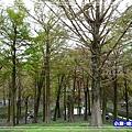羅東運動公園35.jpg