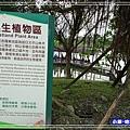 羅東運動公園38.jpg