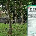 羅東運動公園49.jpg