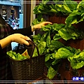 蔬覓蔬食湯滷味13.jpg