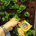蔬覓蔬食湯滷味51.jpg