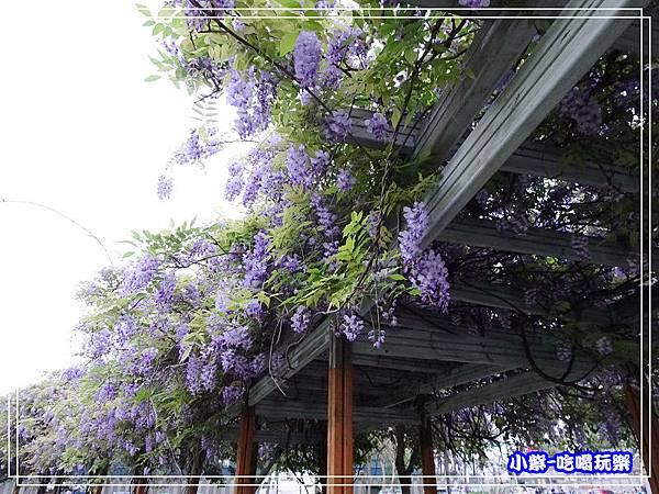元生公園10.jpg