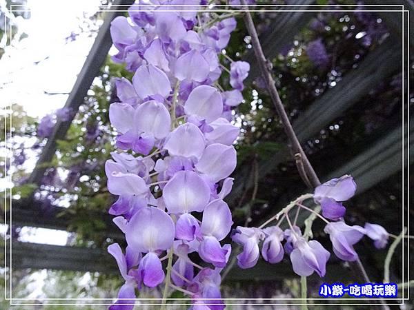 元生公園13.jpg