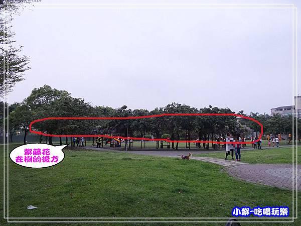 元生公園17.jpg