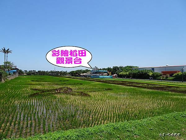 桃園農業博覽會4.jpg