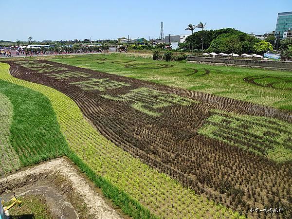 桃園農業博覽會5.jpg