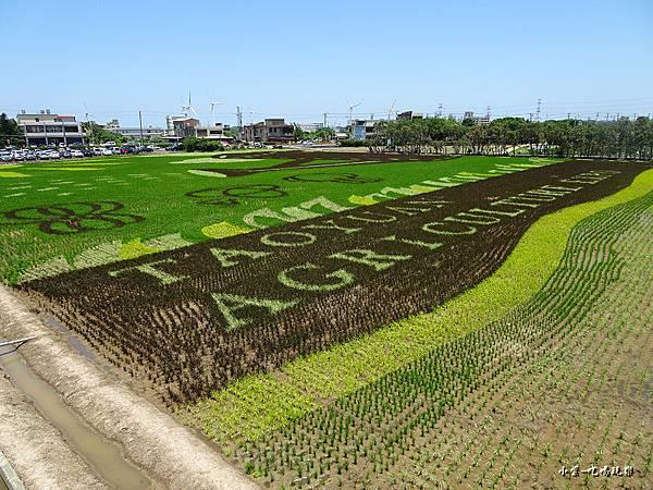桃園農業博覽會6.jpg