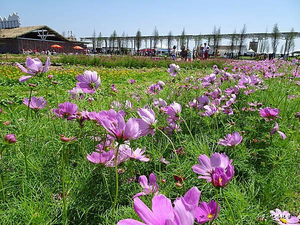桃園農業博覽會28.jpg