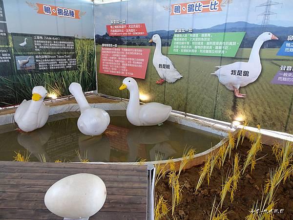 桃園農業博覽會40.jpg