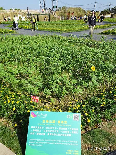 桃園農業博覽會76.jpg