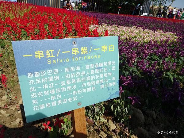 桃園農業博覽會90.jpg
