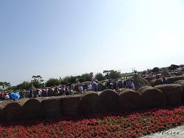 桃園農業博覽會117.jpg